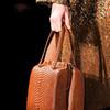 Handbags – самые актуальные сумки в сезоне весна 2014.