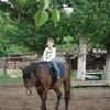 Иппотерапия - лечение лошадьми