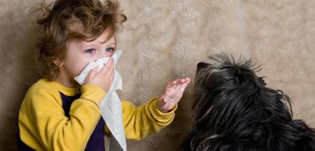 Пищевая аллергия: распознать и защититься — фото 1