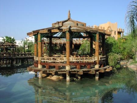 Мой отдых в Египте — фото 3