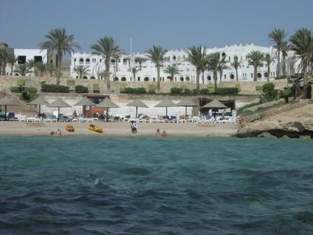 Мой отдых в Египте — фото 1