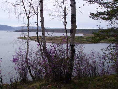 Заливы Ангары.