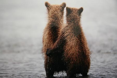 """Вера, Надежда, Любовь"". Автор — Николай Зиновьев. Снято на Аляске."