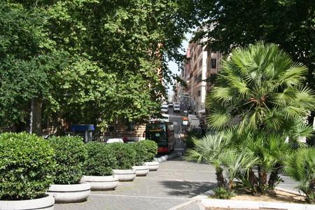 Лето 2014: Москва - Рим – Пиза - Марина ди Биббона - о.Эльба – Пиза - Рим - Москва — фото 3