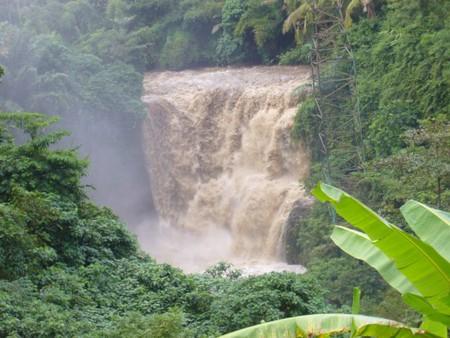 Бали....Welcome to paradise! — фото 8