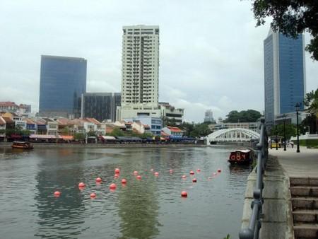 Сингапур-р-р-р! — фото 3