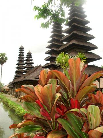 Бали....Welcome to paradise! — фото 3