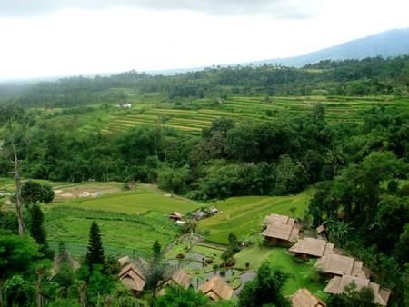 Бали....Welcome to paradise! — фото 6