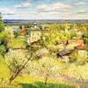 Душевные пейзажи художника Игоря Разживина