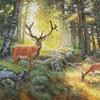 В тишине сказочного леса 2020