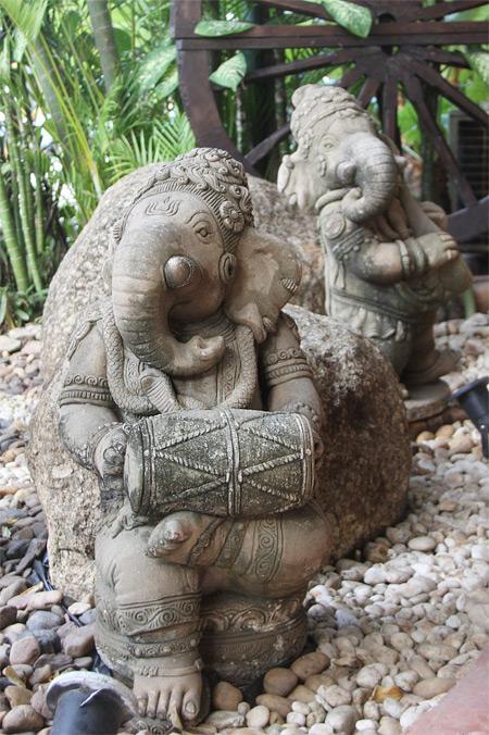 Таиланд. Остров Пхукет. Часть 3. Ребятам о зверятах. — фото 19