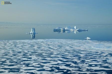 Нарастить темпы и масштабы мер по защите экосистемы Земли призывают ученые и общественники — фото 1