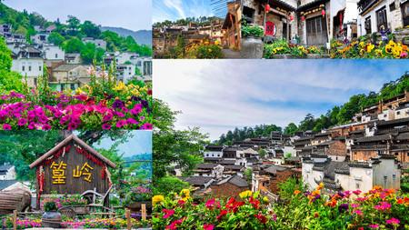 Цветы – часть стратегии по продвижению туристического потенциала Хуанлина — фото 1