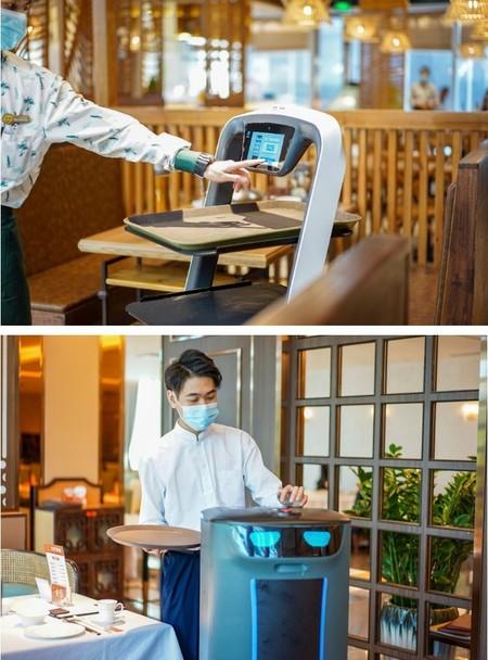 Pudu Robotics увеличивает количество точек обслуживания по всему миру — фото 1