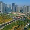 Новый импульс развитию города придает полумарафон Иу-2020