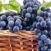Молдавские производители вина получили 42 медали на конкурсе Mundus Vini-2019