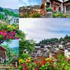 Цветы – часть стратегии по продвижению туристического потенциала Хуанлина