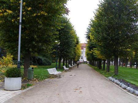 парки города