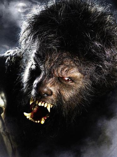 Человек- волк — фото 3