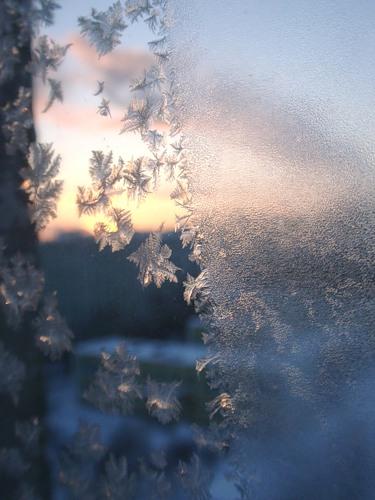 Все на выставку или вот он, - первый день Зимушки-зимы!!! — фото 2