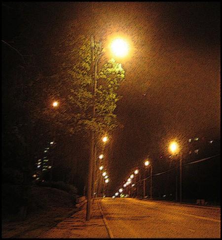 Последняя ночь лета... — фото 7