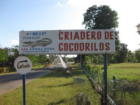 Вояж мечты. Ударим автопробегом по Кубе! — фото 21