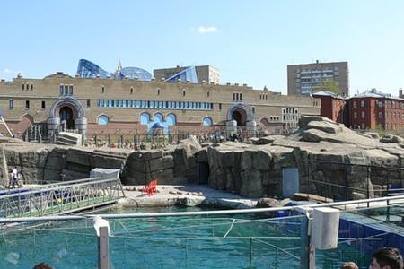 Айда в Зоопарк! — фото 13