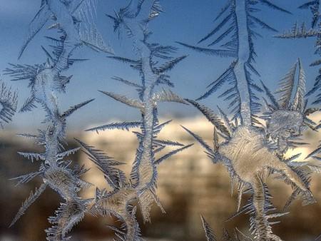 Все на выставку или вот он, - первый день Зимушки-зимы!!! — фото 1