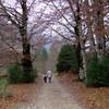 Пиренеи Арагона на Опель Фронтера – семейное путешествие в горы