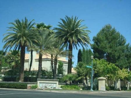 Поездка в Лас-Вегас — фото 2