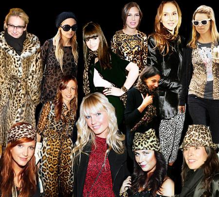 Леопардовый принт - must have нынешнего сезона — фото 1