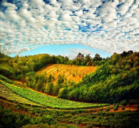 Сюрреалистические пейзажи в работах Катарины Стефанович — фото 5