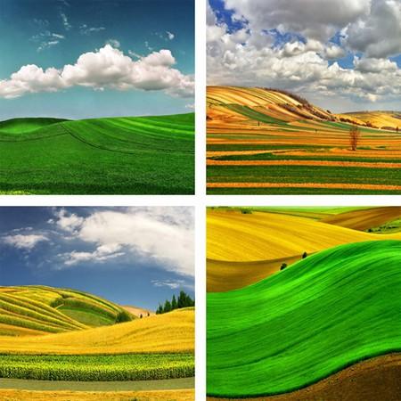 Сюрреалистические пейзажи в работах Катарины Стефанович — фото 2