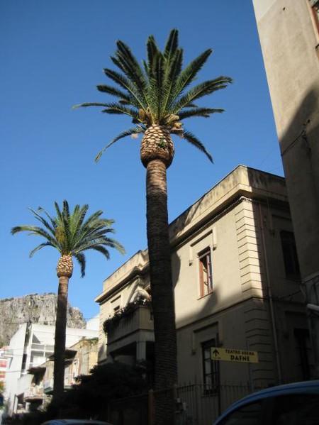 Сицилийская cosa nostra — фото 2
