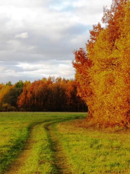 Осенние путешествия — фото 5