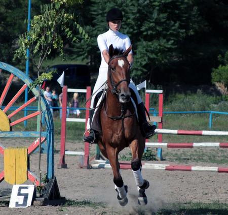 На все четыре копыта или можно ли мне заниматься конным спортом? — фото 2
