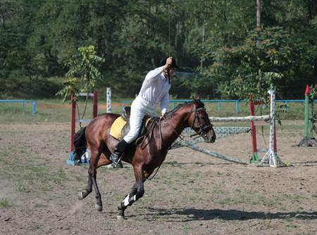 На все четыре копыта или можно ли мне заниматься конным спортом? — фото 1