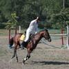 На все четыре копыта или можно ли мне заниматься конным спортом?