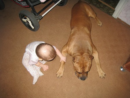 """""""Боец"""" и малыш — фото 9"""