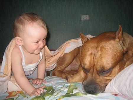 """""""Боец"""" и малыш — фото 1"""