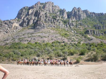 лошади:)