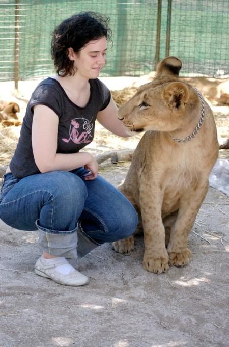 Ну где еще можно за ушком львицу почесать?