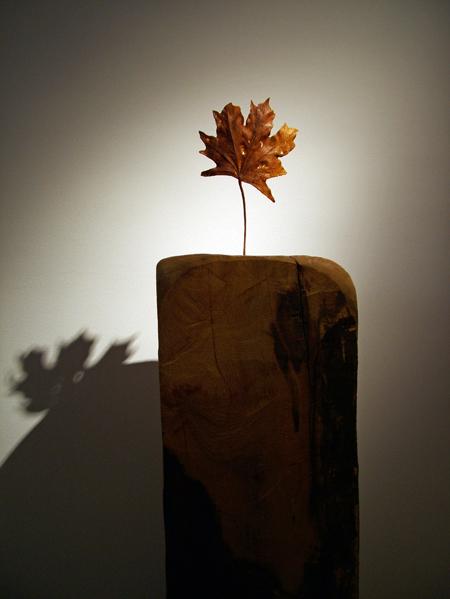 Lady Bug  - скульптура из божьих коровок. Творение  Габора Фулоба — фото 16