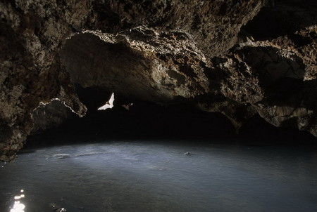 Крубера-Воронья  - самая глубокая карстовая пещера в мире — фото 8