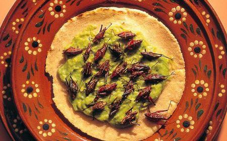 Жареные кузнечики это обычно вкус специй и масла в которых их жарили