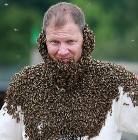 А это уже канадский конкурс пчелиной бороды