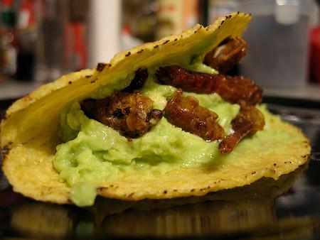 Жареные кузнечики с авокадо в кукурузной лепешке