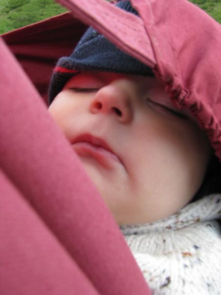 В чем лучше носить своего малыша... — фото 5