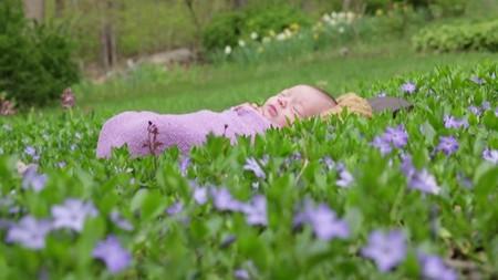 Сонный час на лужайке