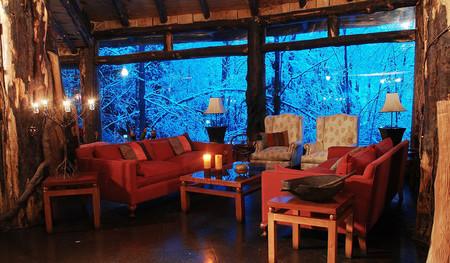 Magic Mountain Lodge - отель-вулкан в девственных лесах Патагонии — фото 12